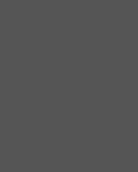 stpetersburg_logo_bw